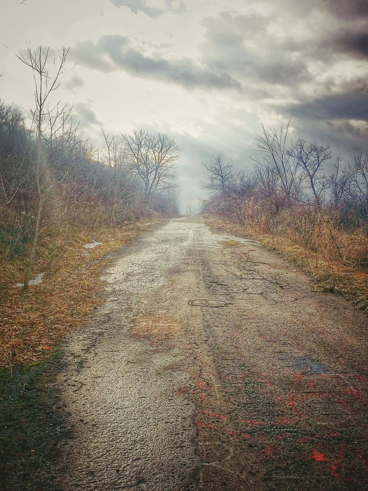 The Road Less Traveled road to split rock quarry Road Trip Graffiti Rural Exploration Trees And Sky Nature Photography Country Walks Creepy Places Hill Top Walking Uphill