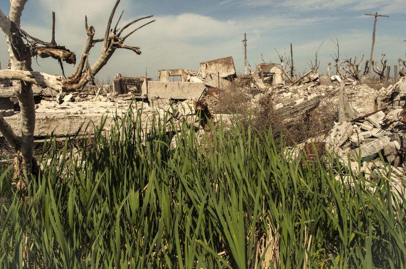 Buenos Aires Ciudad Fantasma Destrucción Destrucción Ecoló Destruction Desvastaci Ecologic Ecology Ecología En Peligro Epecuen Lugares Destruidos Por El Provincia De Buenos Aires