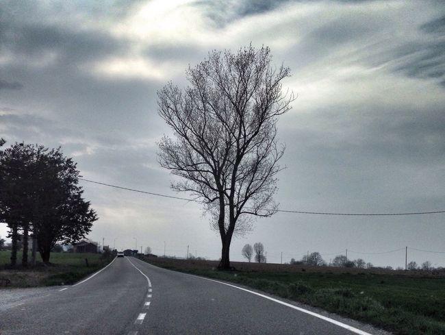 Castel D'Arquato Emiliaromagna Strada Road Albero Tree Cielo Parma