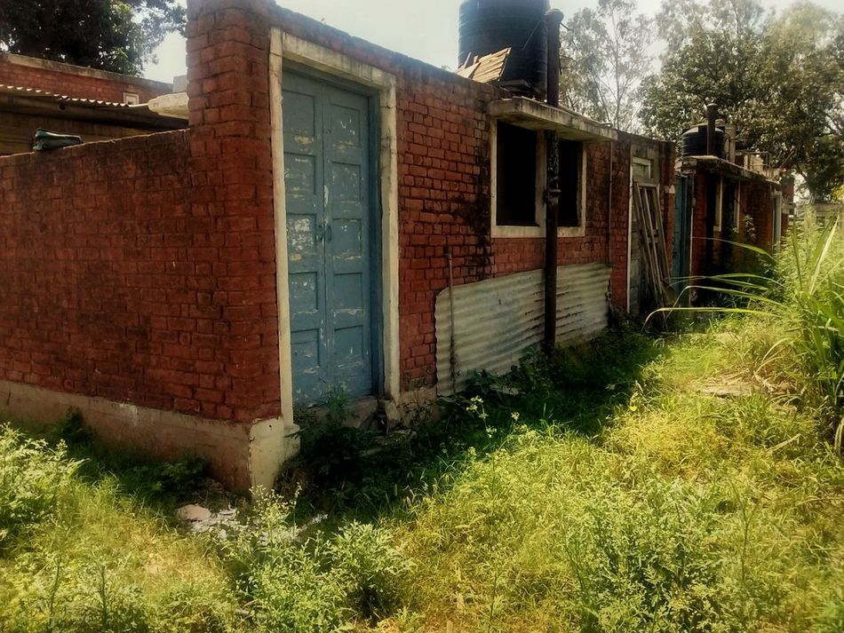 Abandoned House Brick Wall Covered By Vegetation Old Residential Quarter Patiala India Forlorn Area Lonely Abandoned Red House Showcase April