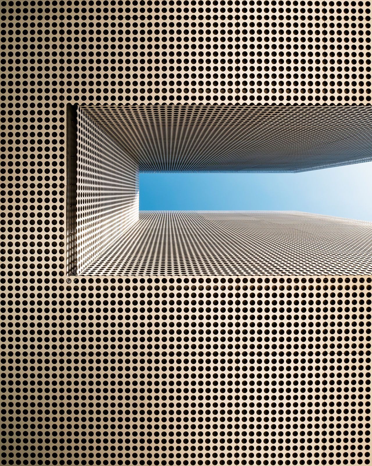 Abstract Abstract Photography Architecture Built Structure Close-up Day Gold And Blue Macaw Indoors  No People Pattern Simplicity Sky Textured