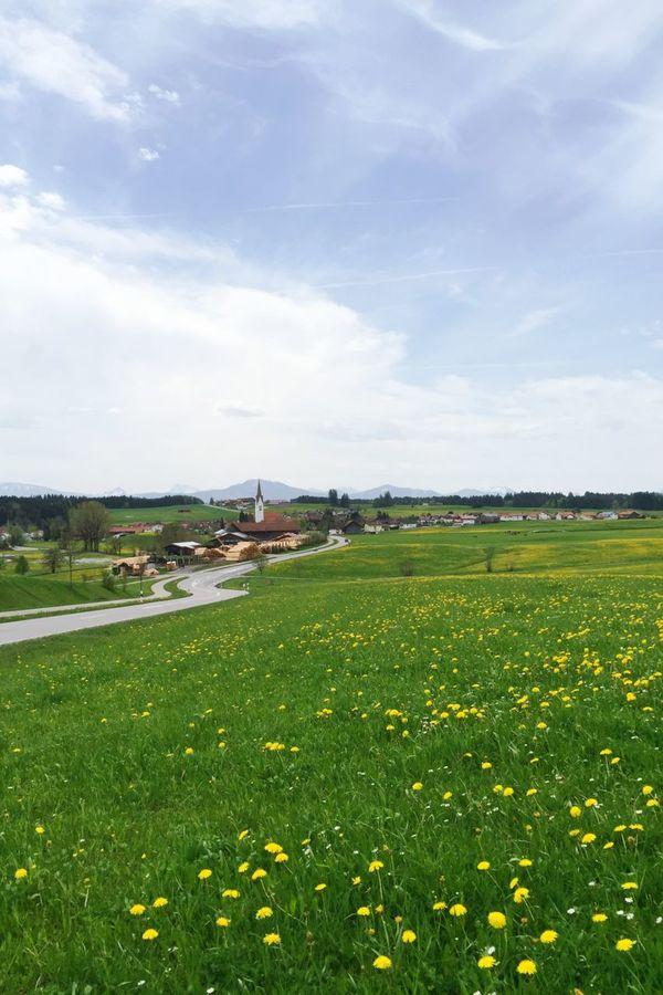 Ortschaft Wald im Allgäu Spring Meadow
