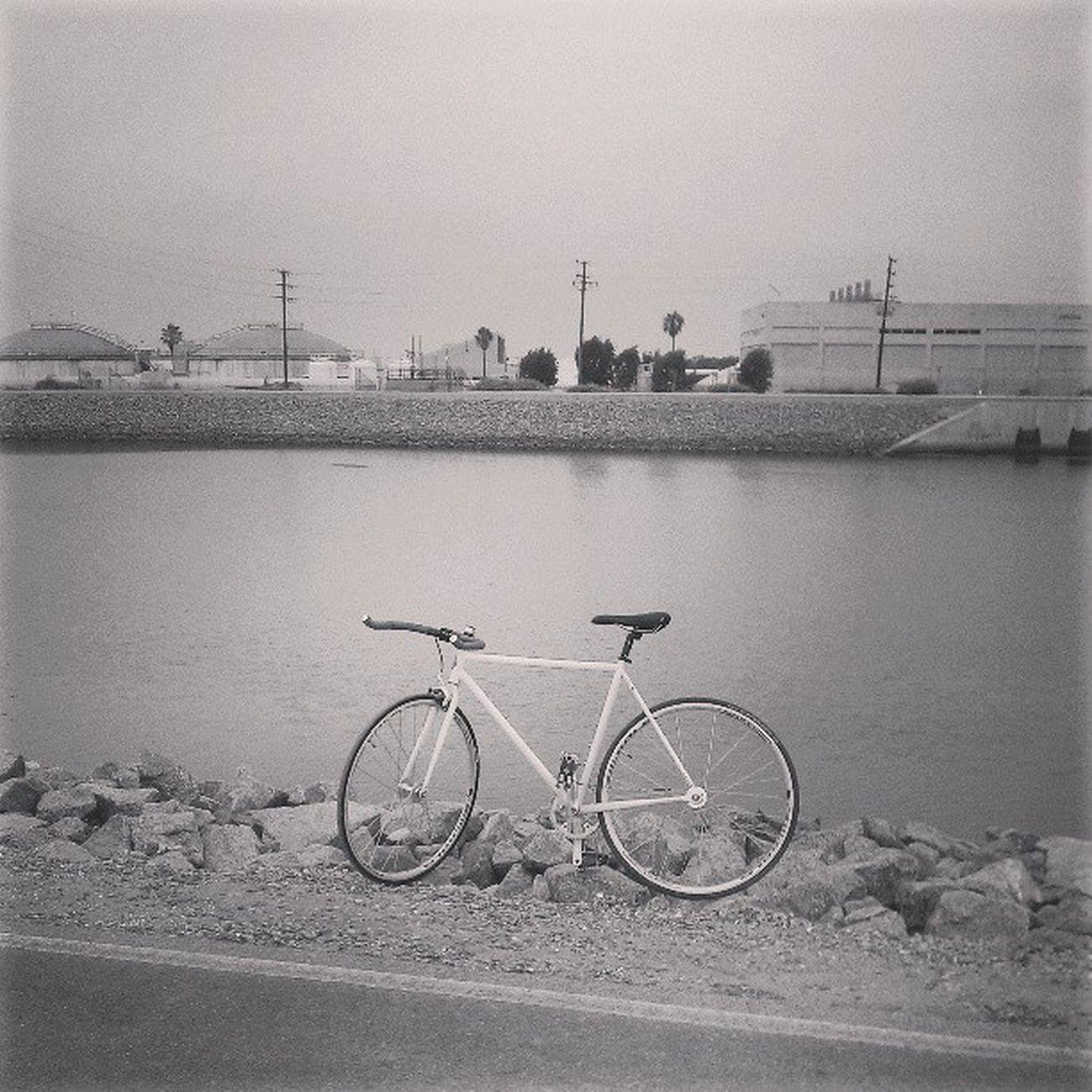 Got a flat all the way by the beach ): w/ jordanschlackman #fixedgear #tubeeater #santaana #river #trail #aclass #solo #bw #died #bike #instafixie #instadaily River Bike Solo Bw Trail Fixedgear Died Instadaily Aclass SantaAna Instafixie Tubeeater