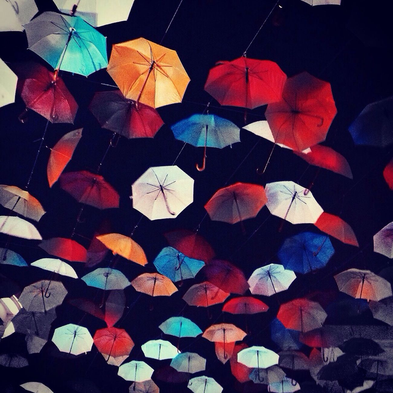 Vscocam VSCO Cam Umbrellasky Umbrellas