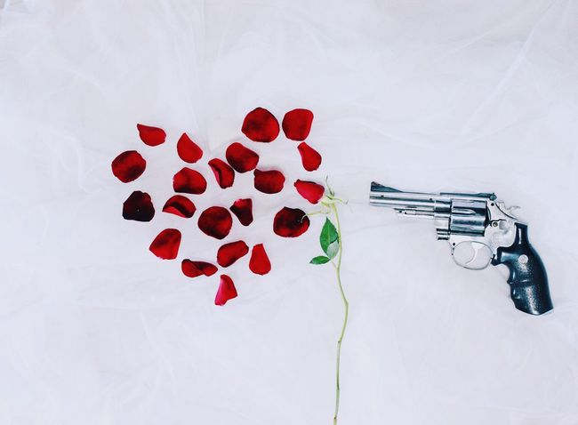 Gun's N Roses?! 😅😅 High Angle View No People Weapon Red Indoors  Handgun Bullet White Background Day Photography Bleeding Heart  Rose Petals Crimson Roses Petals Gun Creative Creative Photography Shot Target Studio Shot Flower Heart Shape Love Red EyeEmNewHere Sommergefühle
