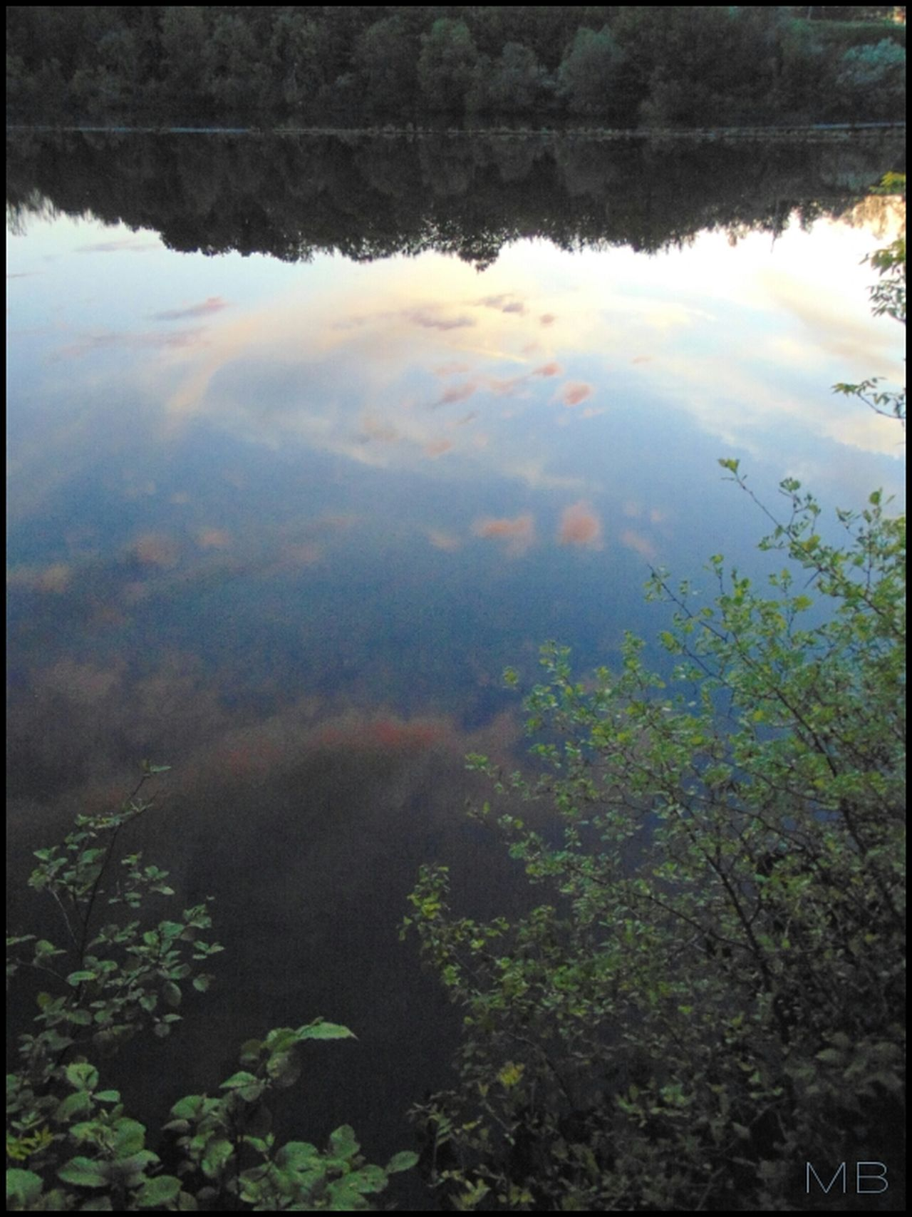 MBfoto, Water Nature Reflection Tree Outdoors Standing Water Plant Day No People Landscape Beauty In Nature Sky