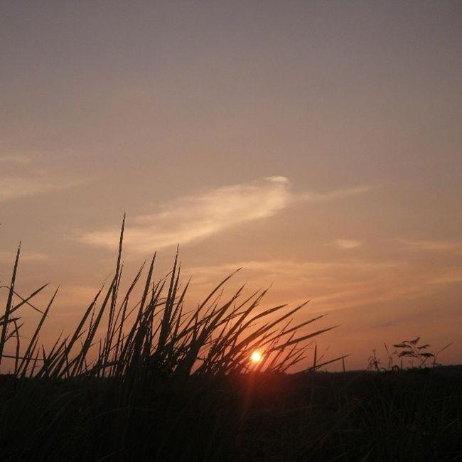 [ terbenam ] Waykanan Lampung INDONESIA Nature instanusantara instanusantaranature webstagram statigram picoftheday photooftheday sunset instaparadise