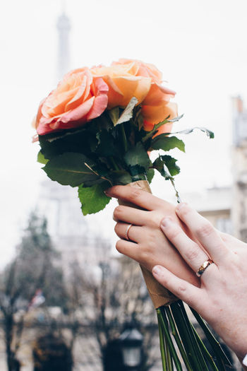 Just married 2 Couple Eiffel Tower Eloped Marraige Married Romantic Wedding Wedding Photography Bouquet Bride Ceremony Close-up Day Elopement Flower Flower Head Holding Human Hand Outdoors Peach Pink Color Rings Rose - Flower Roses Wedding Ring