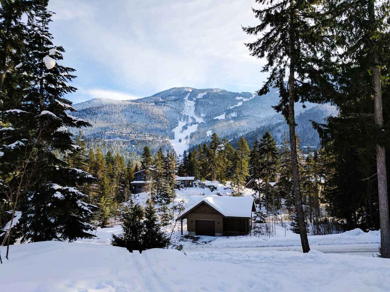 Cabin with a a ski resort mountain Tree Snow Tranquil Scene Nature Cold Temperature No People Beauty In Nature Scenics Sky Winter Landscape Outdoors Day Mountain Ski Resort Cabin Chalet