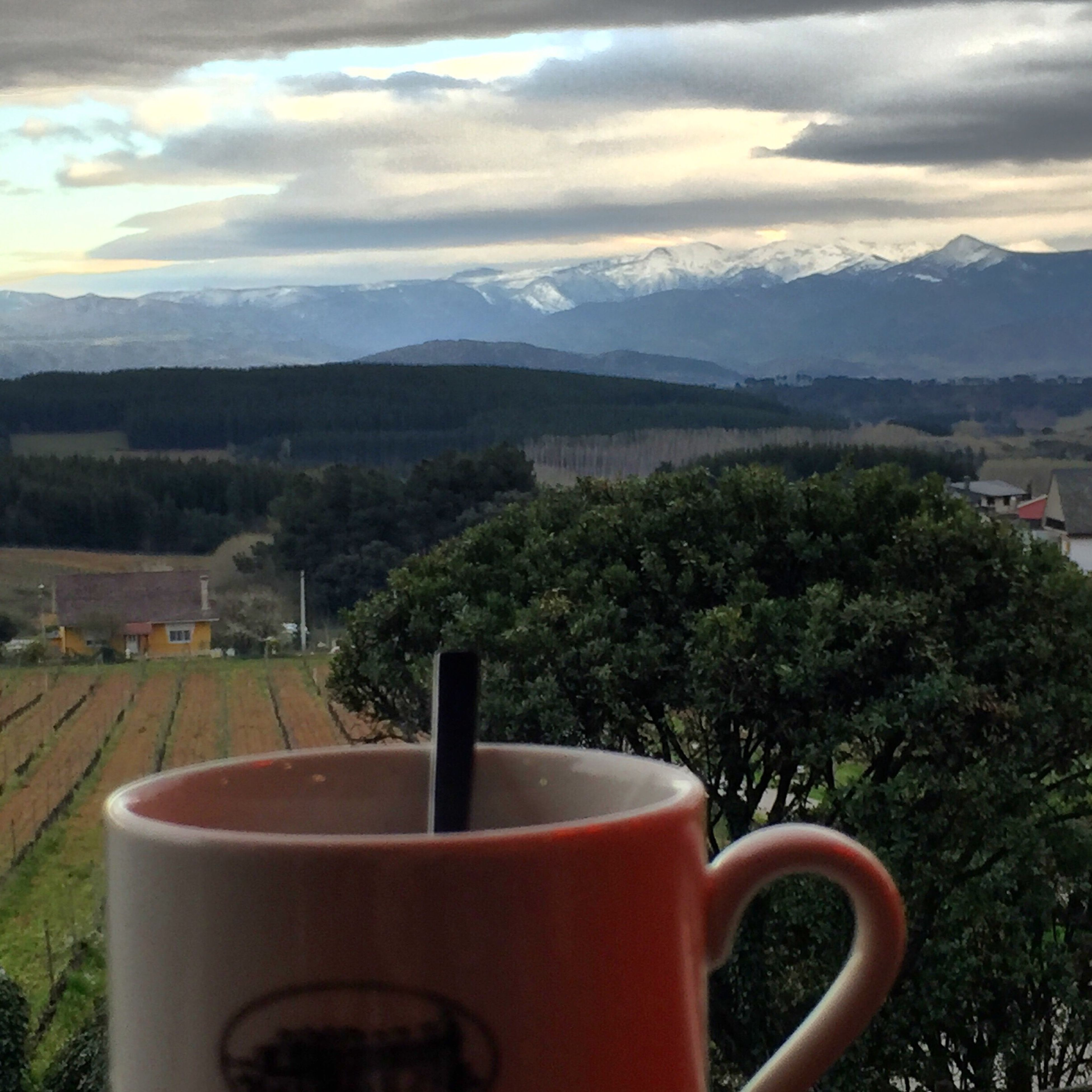 drink, sky, table, tree, food and drink, tranquil scene, cloud - sky, landscape, mountain, tranquility, freshness, cloud, nature, scenics, beauty in nature, refreshment, growth, coffee cup, no people, plant