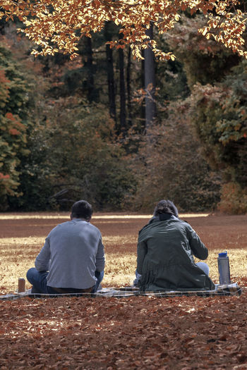 Rear view of a couple sitting in autumn park enjoying a picnic portrait. Apps Autumn Changing Seasons Dating Divorce Goals Rear View Relationship Adult Colorful Day Fighting Foliage Leaves Marriage  Men No Recognizable People Outdoors People Rear View Silent Treatment Tension Tree Two People