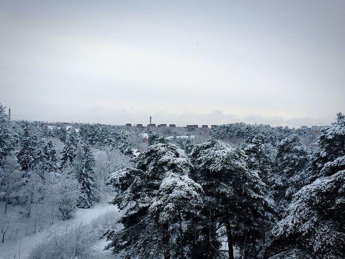 Stocholmhuvudstaden , Winter Lidingö ,