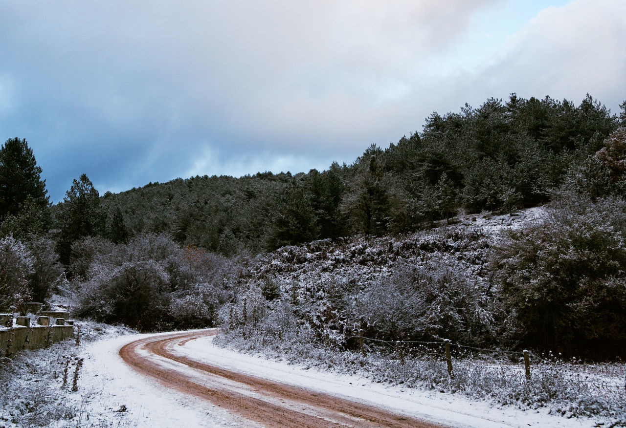 Winter in Bolu Beauty In Nature Cloud - Sky Cold Temperature Day Dirt Road Growth Hills And Valleys Hillside Icy Nature No People Outdoors Paths Pathway Sky Sky And Clouds Snow Snowy Mountains Tree Trees And Sky Winding Path Winding Road Winter Winter Trees Wintertime