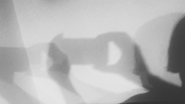 Shadowselfie or selfieshadow??? It's All About The Whitespace Bnw_friday_eyeemchallenge White Album Light And Shadow Too Many Selfies Can Damage Your Health