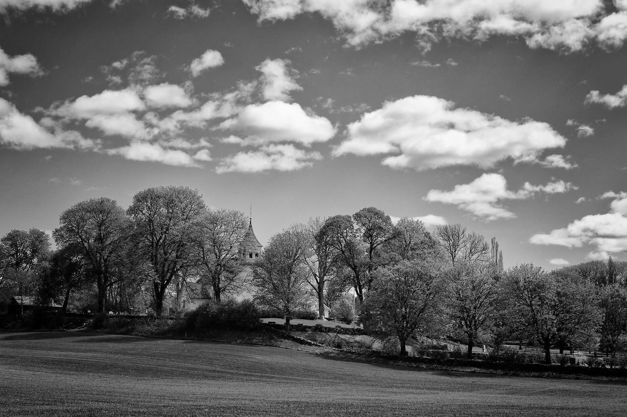 Tree Sky Outdoors Nature Day Springtime No People Tranquility Cloud - Sky Beauty In Nature Tranquil Scene Landscape Scenics Bare Tree Growth EyeEm Masterclass Exceptional Photographs Hello World Spring Eye4photography  Place Of Worship Black & White Black And White Eye4photography  Blackandwhite