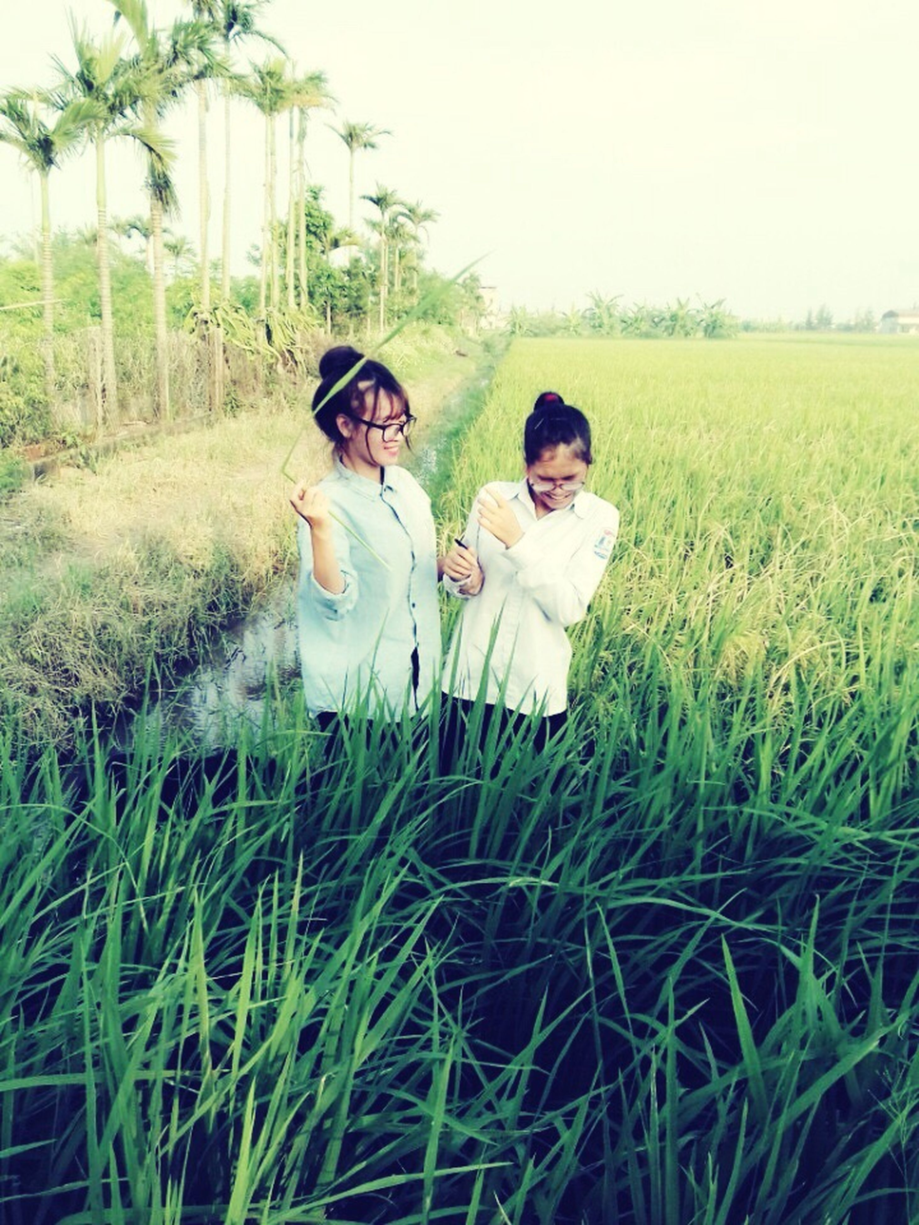 grass, togetherness, leisure activity, young adult, non-urban scene, casual clothing, person, green color, field, growth, sky, day, outdoors, nature, vacations, tranquility, focus on foreground, tranquil scene, beauty in nature