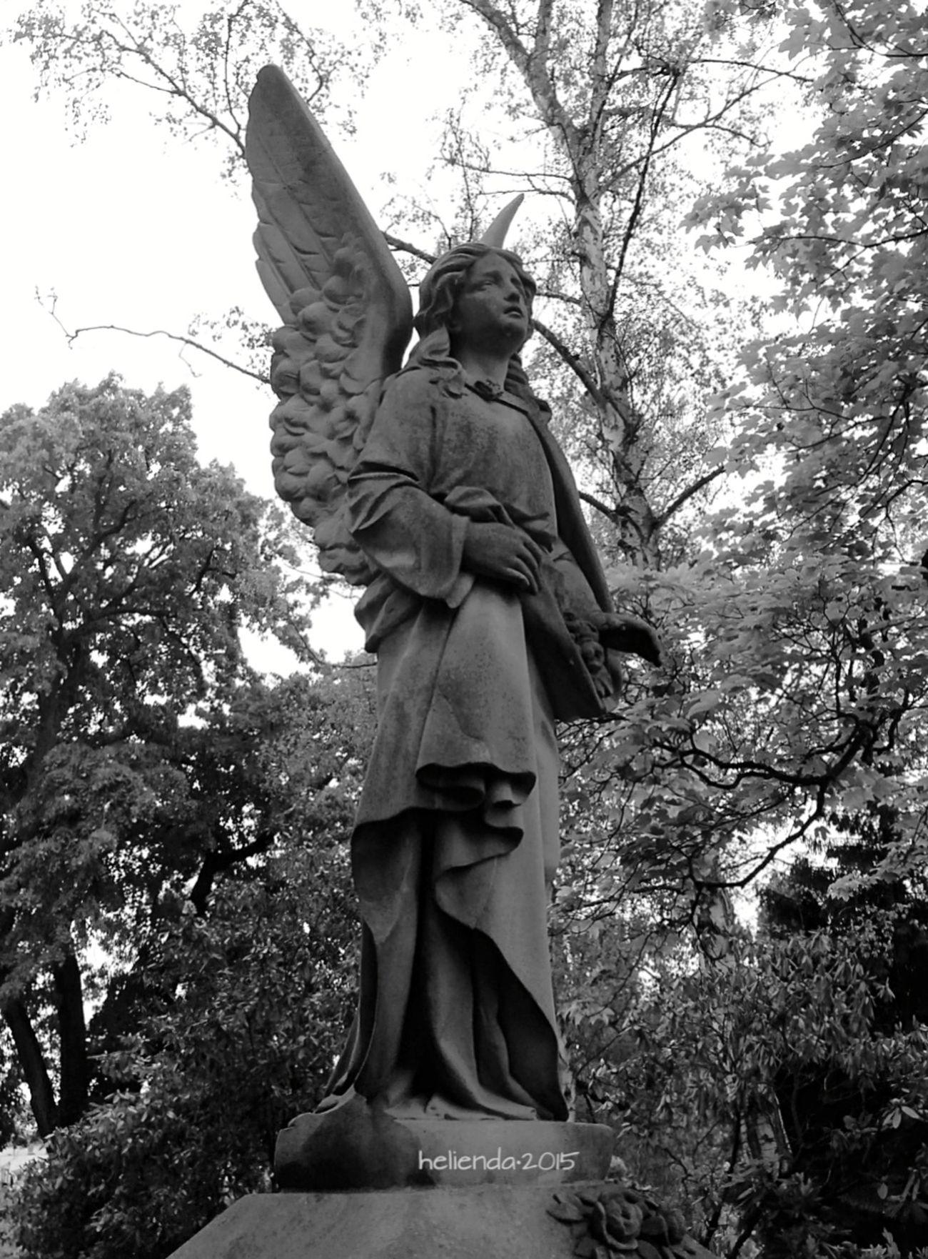 Statue Graveyard Beauty Monochrome Blackandwhite Black And White Black & White VSCO Eye4black&white  Vscocam Black&white