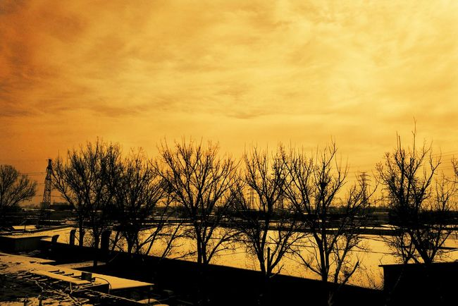 冬天 天空 北京 冬天 下雪 暖色调 Landscape