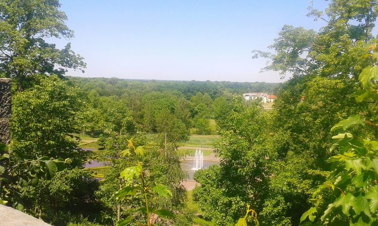 Burg Bentheim Castle Beautiful View Beautiful Nature Hot Day Tree Agriculture Growth Crop  Nature Rural Scene Field No People Outdoors Plant Day Fruit Landscape Beauty In Nature Sky Irrigation Equipment Water Freshness