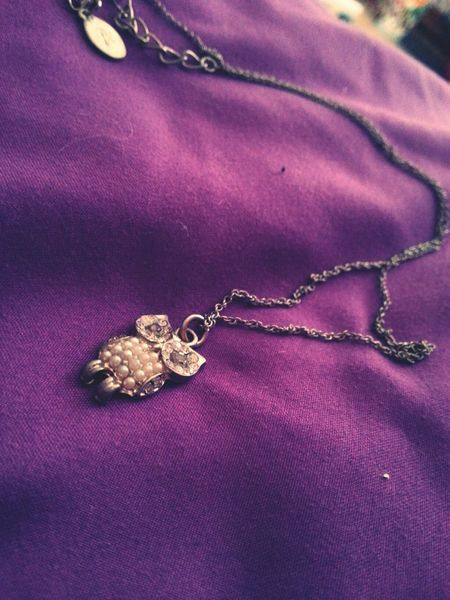 Owl Necklace Fall Taking Photos