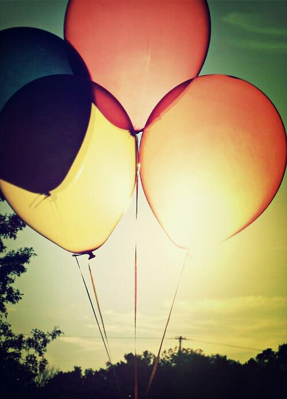 Balloons Having Fun With Ballons Colorful Balloons