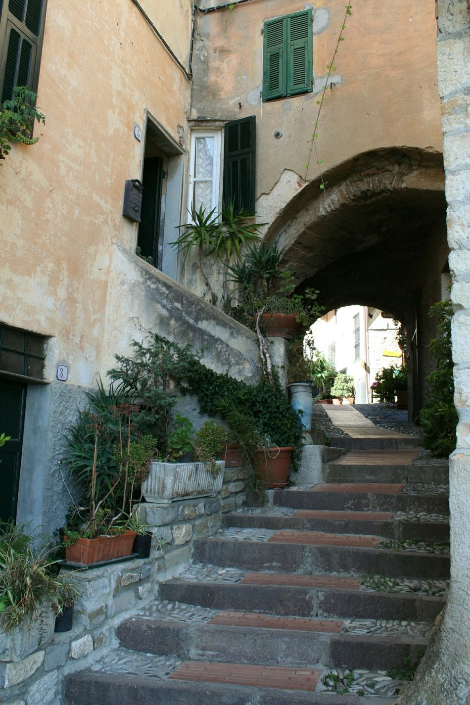 Building Exterior Architecture Built Structure No People Outdoors Tree Steps Day Old Street Narrow Street Vicolo Del Paese Mediterranean Village Travel Destinations Italian Village  Architectural Details Old Buildings Liguria,Italy Arch Architectural Detail Blooming In The Street Freshness EyeEmNewHere