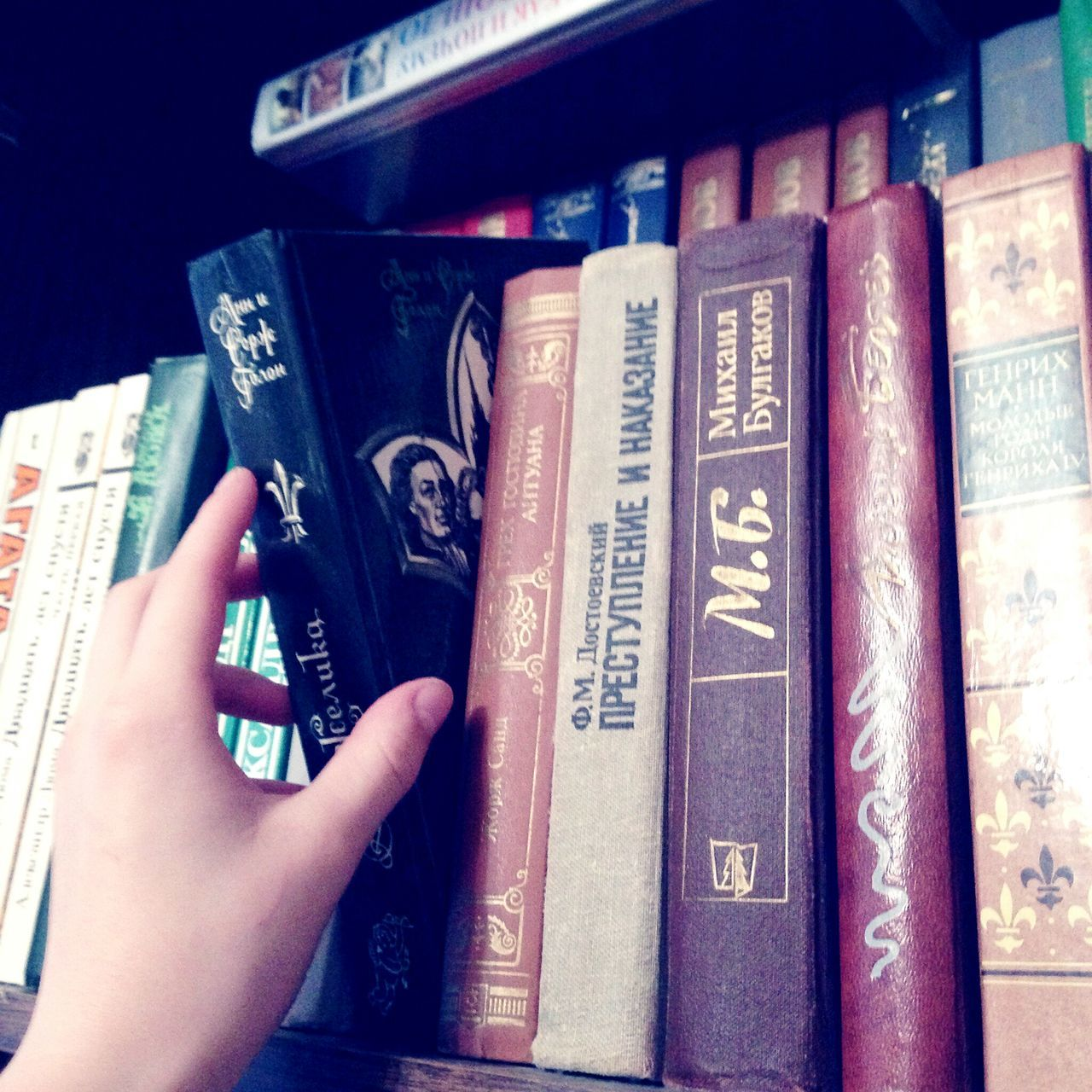 book, human hand, education, learning, literature, real people, indoors, one person, human body part, close-up, bookshelf, library, day, people
