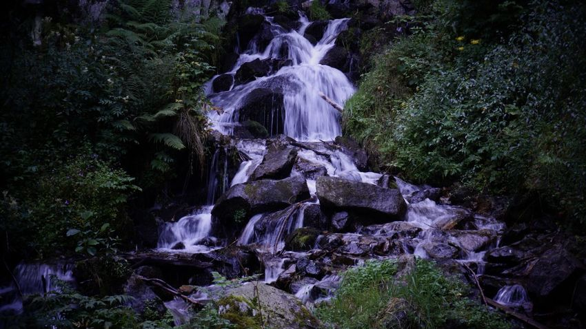 Beautiful Nature Fairytale  France Landscape Long Exposure Summer2016 Vogesen Walking Around Waterfall Waterfall_collection EyeEm Nature Lover EyeEm Best Shots Colours Of Nature Neon Life