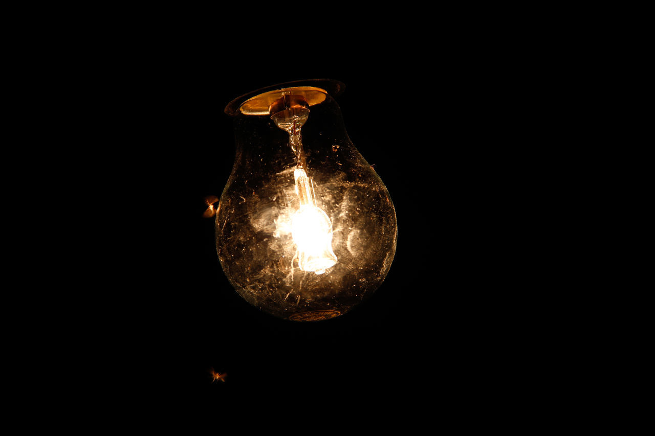 black background, electricity, light bulb, no people, close-up, copy space, illuminated, studio shot, filament, night