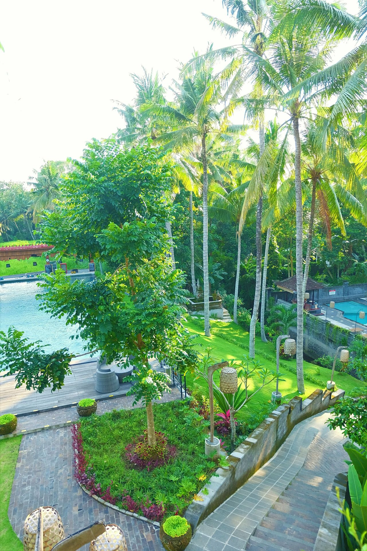 The Artini Resort, Ubud Ubud, Bali HotelsandResorts Hotels And Resorts Hotel View Garden Photography Day Tree Beauty In Nature Swimming Pool Green Color Outdoors Holiday - Event Holidays Holiday Nature Photography Hotel Hotelview Togetherness Resort Hotel Hotelpool