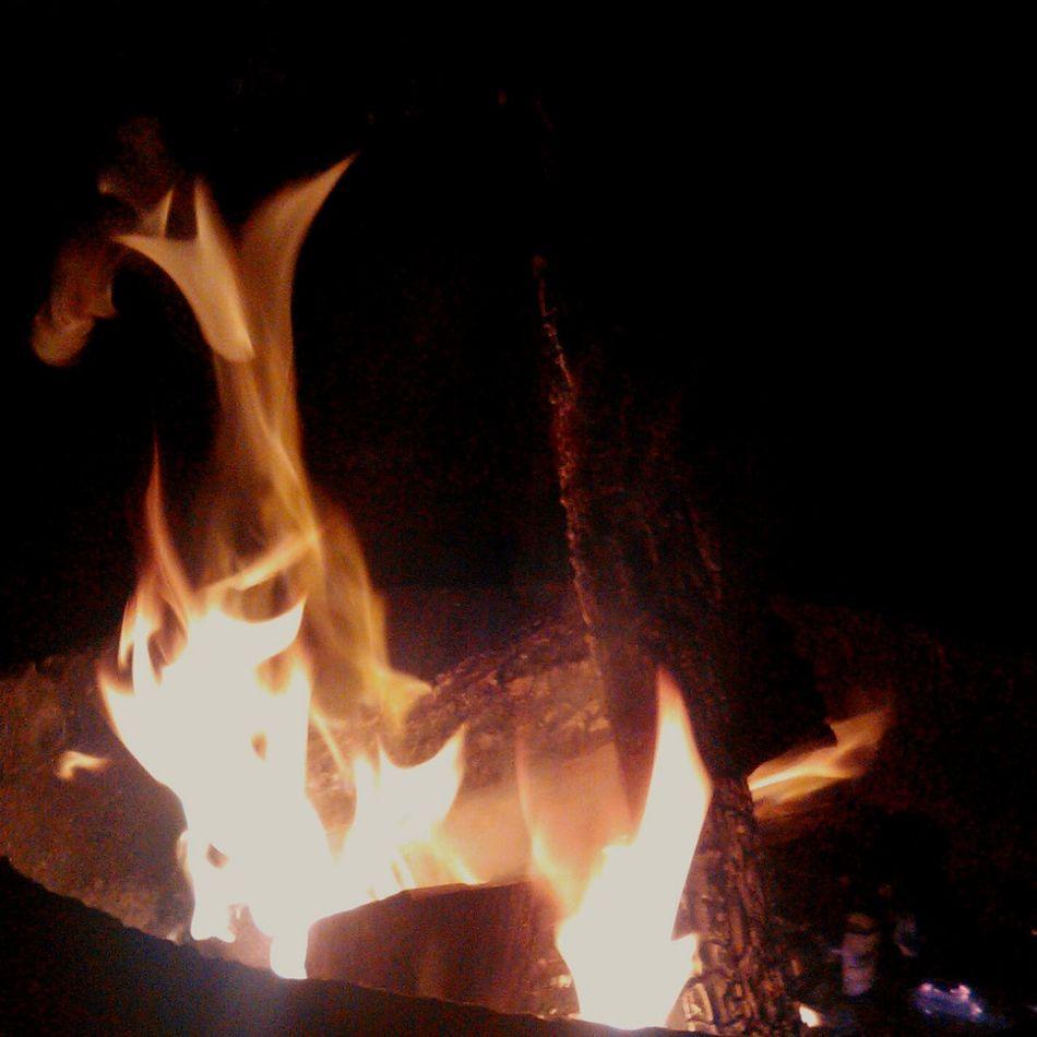 One Wild Night Fire Firepit Camp Fire Burstshots Burstphotos Showcase: November