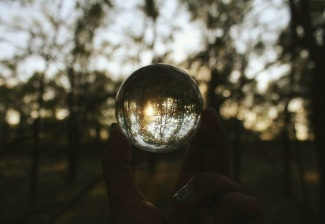 See you next year, August. Bokeh Sunset EyeEm Best Shots EyeEm Nature Illuminated Close-up Focus On Foreground Crystal Ball Reflection Person Branch Part Of Glass - Material Transparent Sphere Selective Focus Personal Perspective Geometric Shape Sky Extreme Close-up Freshness