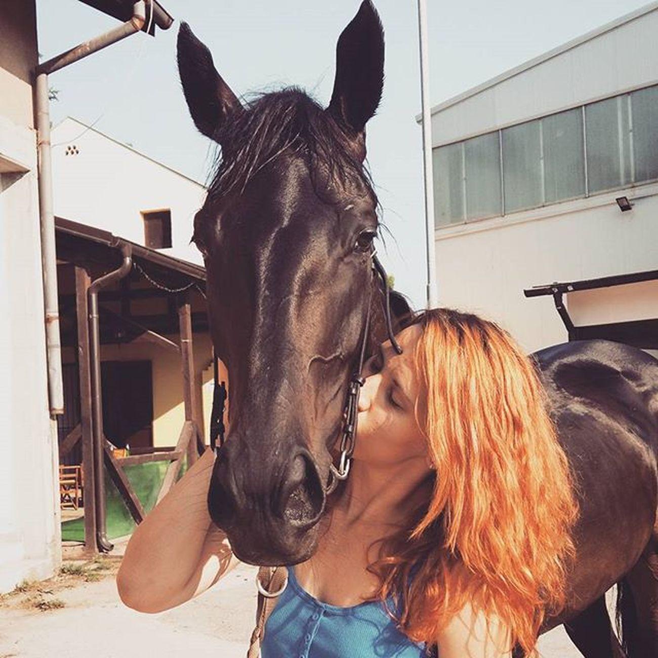 Kobilaca iz snova postoji! 🏇🏇🏇🏇❤❤❤❤❤💖💖💖💖👌👌👌👌 Thoroughbredsofinstagram Horsesofinstagram Horse Love mare dreammare caballosdeinstagram