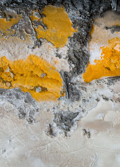 Yellowstone National Park Abstract Aerial View Close-up Hot Spring Nature Outdoors Rock - Object Textured  Wallpaper Water Yellow EyeEm Nature Lover EyeEm Gallery