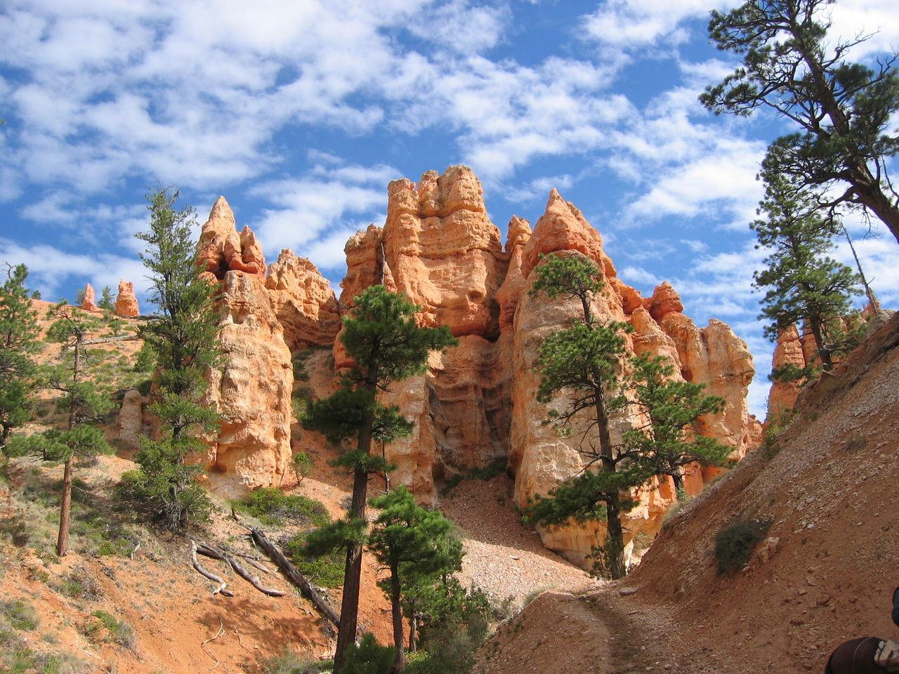 Beautiful stock photos of grand canyon, Arizona, Beauty In Nature, Bryce Canyon, Bryce Canyon National Park