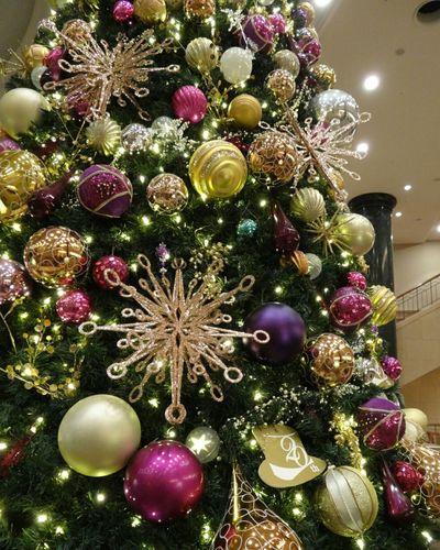 ハウステンボス クリスマスツリー