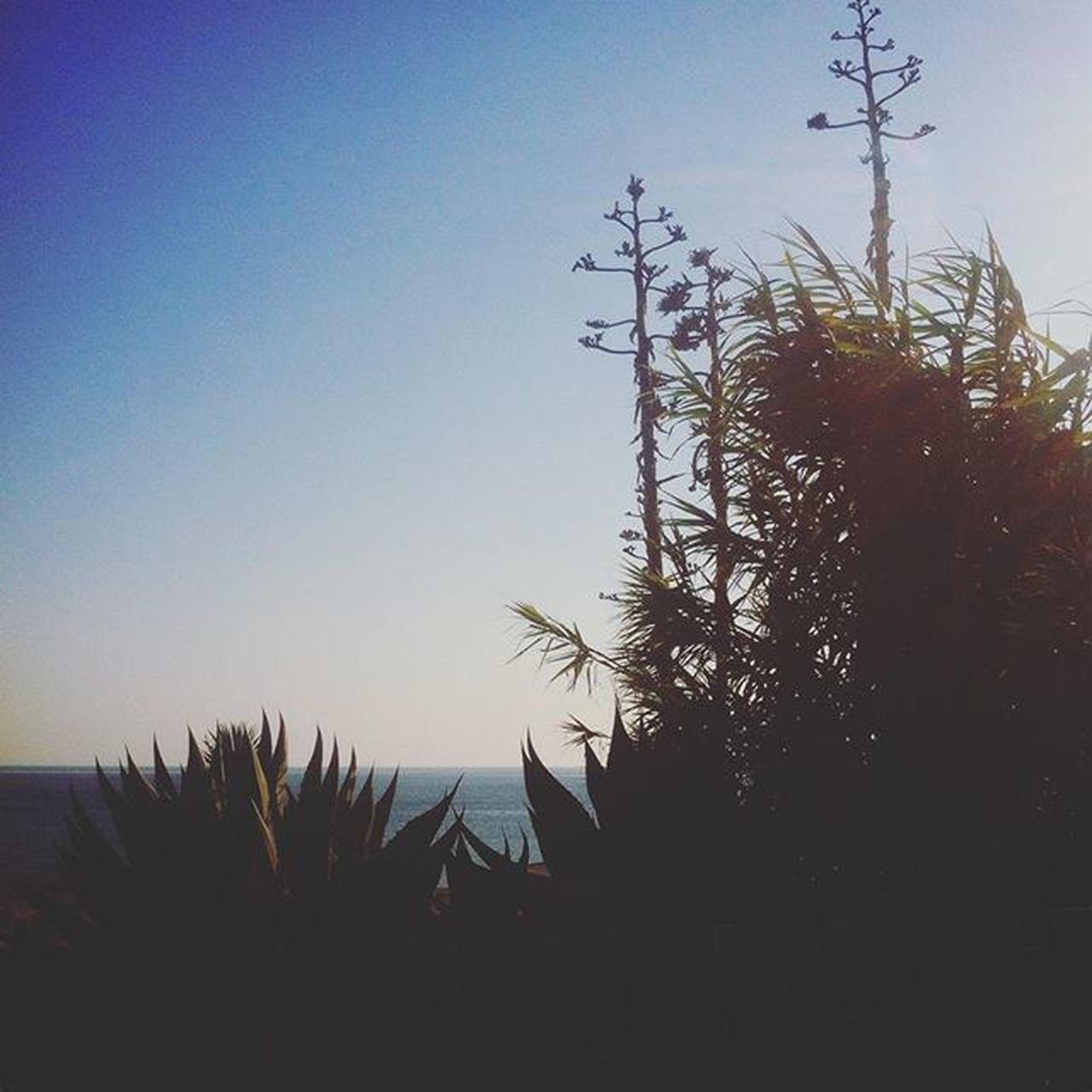 Roteiro das praias Lisboa Cascais Verao2015 Moinho