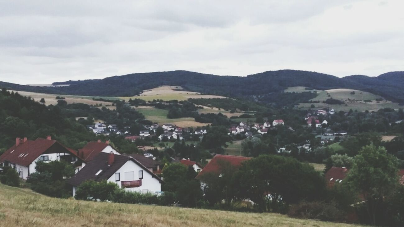 Summer '15 ❤ Germany Wolfstein Summer Mis It Enjoying Life Nature