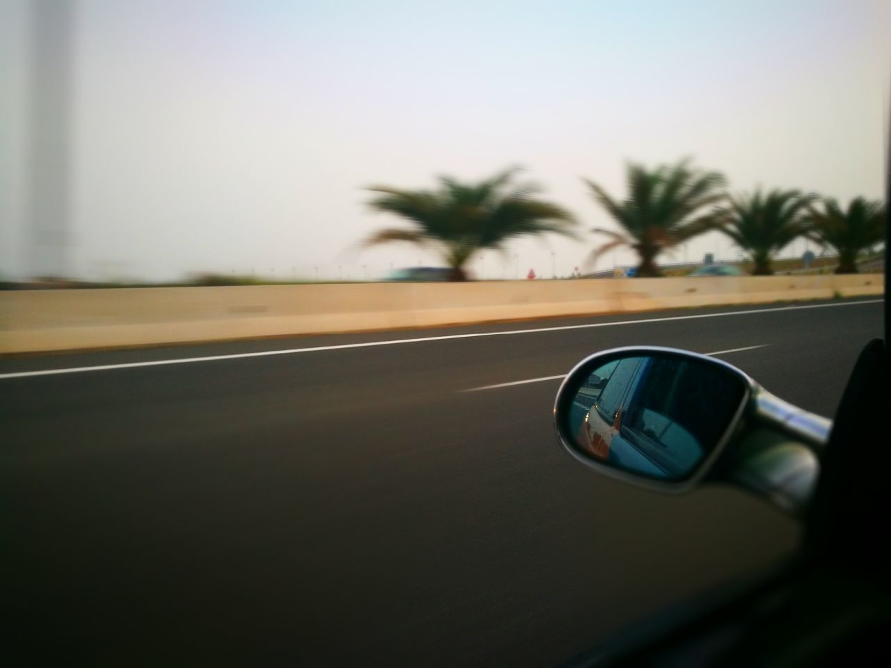Traveling Home For The Holidays Car Palm Tree Transportation Tree No People Vehicle Mirror Sky Day Close-up Outdoors HuaweiP9 Transportation Travel Photography Car Travel