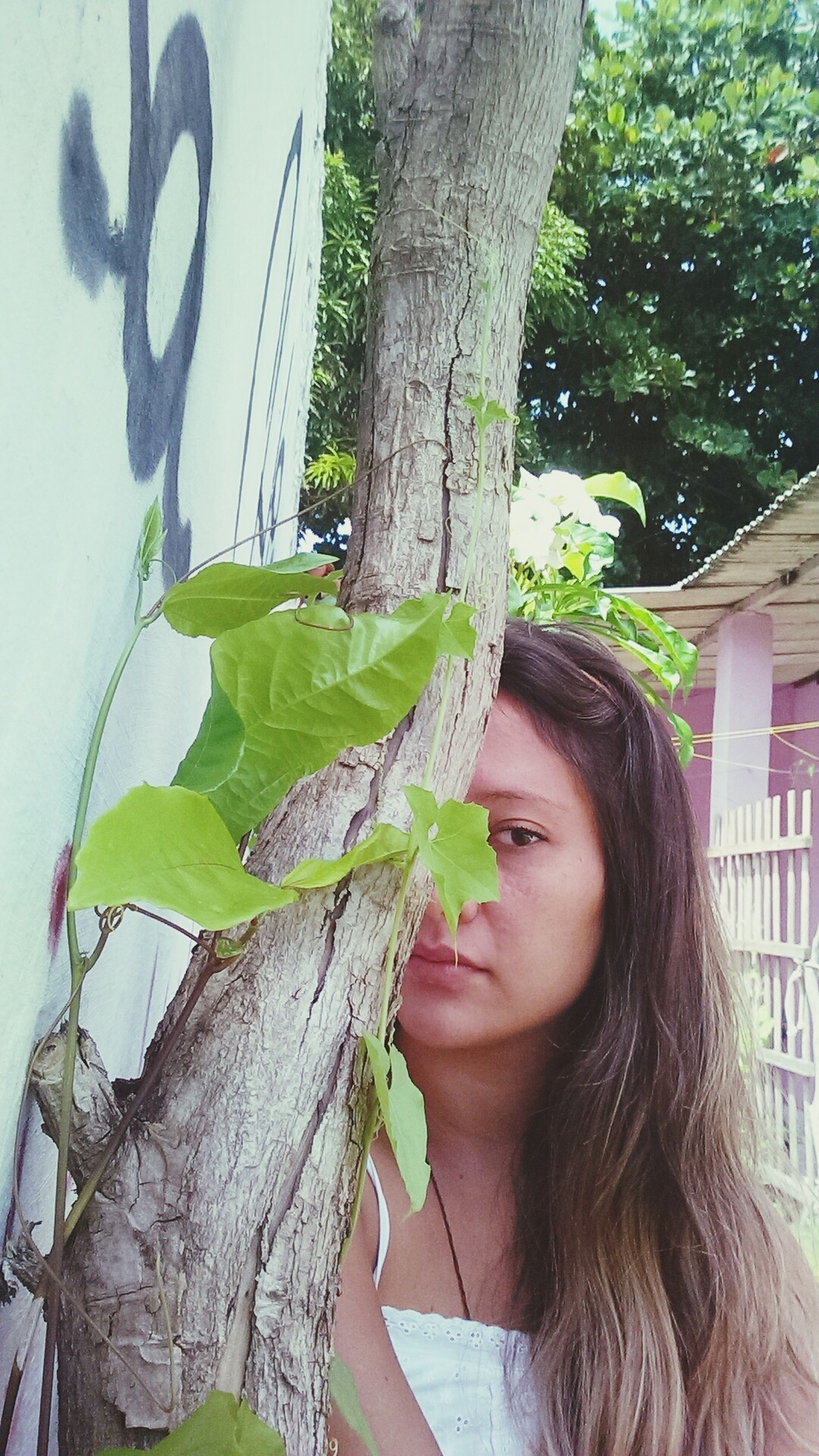 tree, lifestyles, leisure activity, holding, leaf, tree trunk, young women, growth, plant, day, person, focus on foreground, branch, long hair, young adult, outdoors, front view, close-up