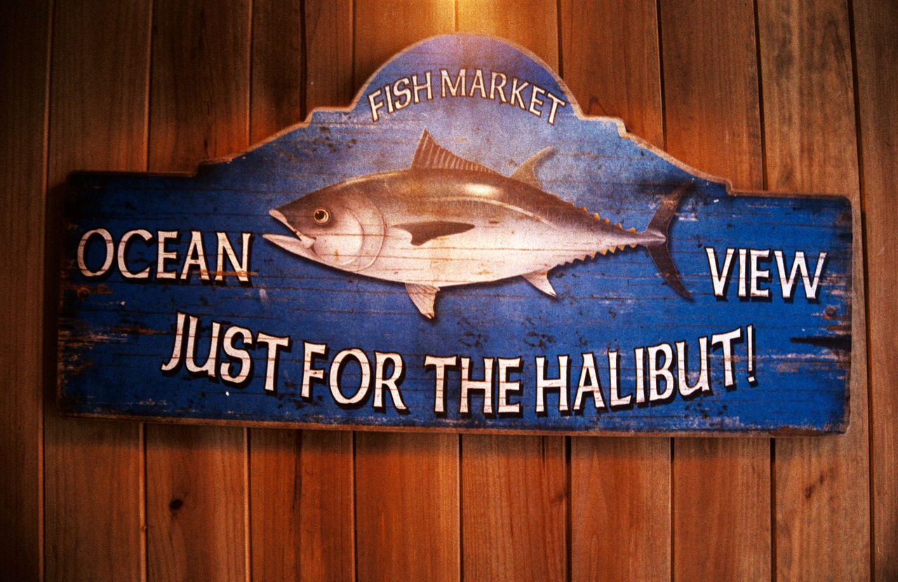 Capital Letter Close-up Communication Fish Halibut No People Poster Restaurant Sign Signboard Text Western Script