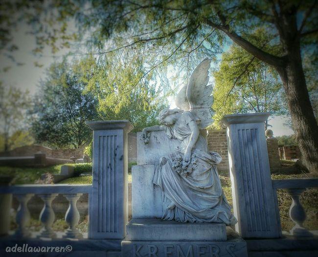 Cemetery Photography Graveyard Beauty Graveyard_dead Angel Angels Graveyard Graves Cemetery Wanderings Texas Houston Texas Houston