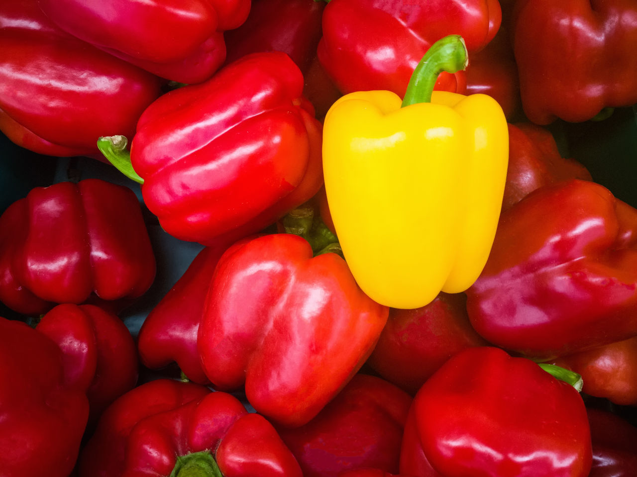 pepper bell Red Healthy Eating Food And Drink Freshness Vegetable Full Frame No People Food Directly Above Close-up Red Bell Pepper Backgrounds Studio Shot Indoors  Day yellow Sweets Vegetables Salad Bar Meal Vegetables Photo Vegetables & Fruits