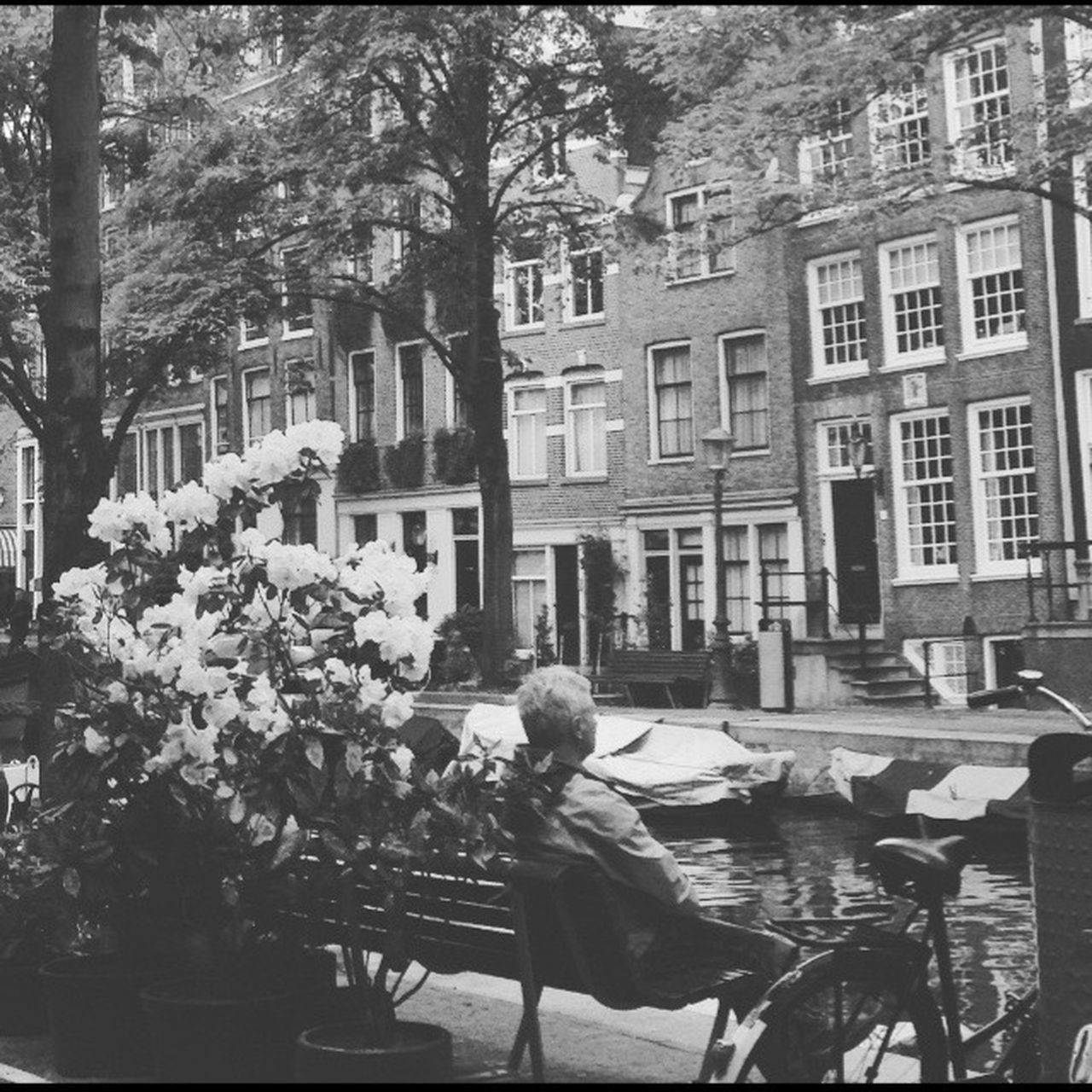 Amsterdam Architecture Real People Tree Outdoors Man Tourist One Person EyeEm Blackandwhite Amsterdam Canal Contemplatinglife Simple