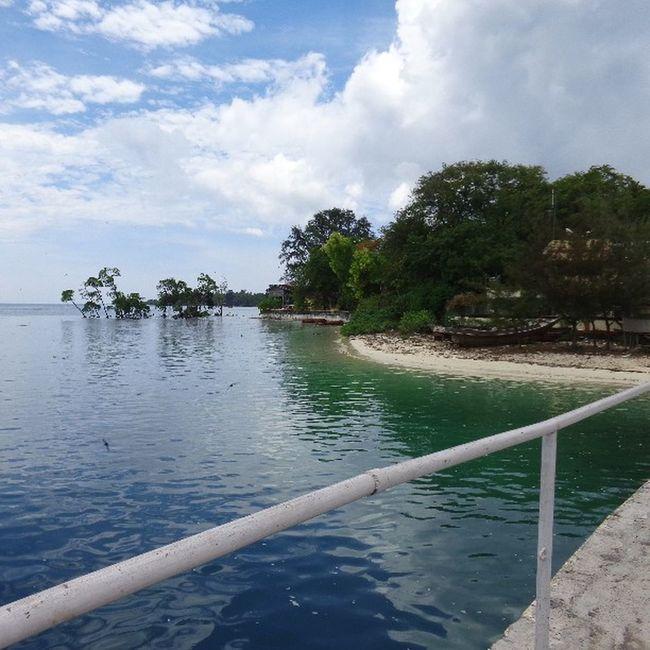 AndamanandNicobar , Andamanislands , Havelock , Bluewater , Lightgreenwater , Nature , Naturelover , Naturephotographs , India , Incredible India .