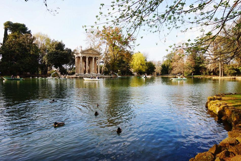 Walk in the park Lake Beauty In Nature Villa Borghese Park Roma Italy Waderlust EyeEm EyeEmNewHere