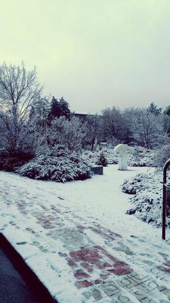 College Days Snow ❄ Snowy Enjoying Life Hi! Hello World