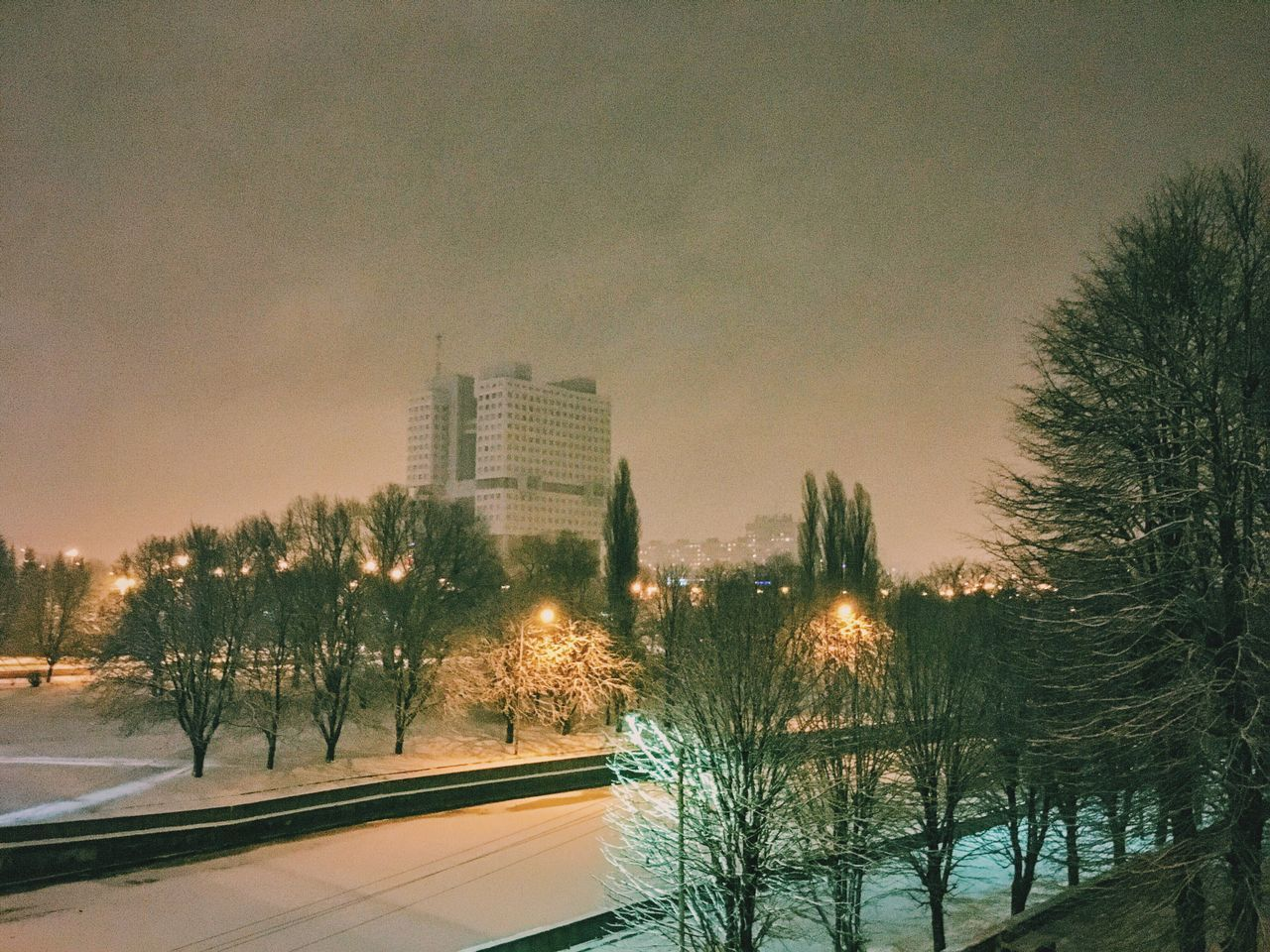 cold temperature, snow, architecture, built structure, winter, tree, building exterior, sky, bare tree, no people, outdoors, nature, city, growth, skyscraper, day