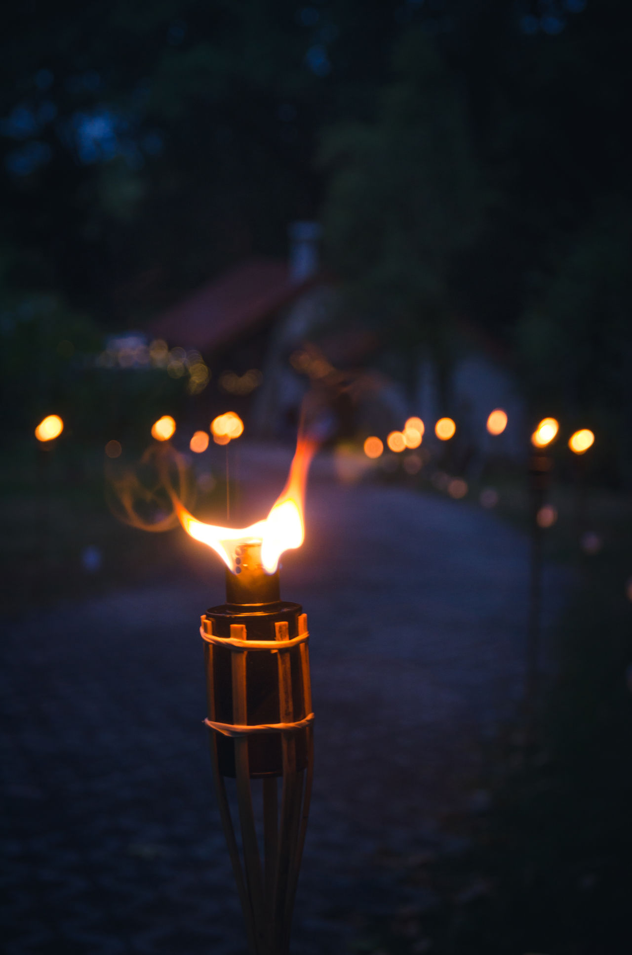 A single torch burning in the wind. Burning Candle Close-up Dark Diya - Oil Lamp Evening Fire Flame Flare Flarelight Garden Party Glowing Heat - Temperature Igniting Illuminated Nature Night No People Oil Lamp Out Of Focus Background Outdoor Location Outdoors Pathway Torch Torchlight