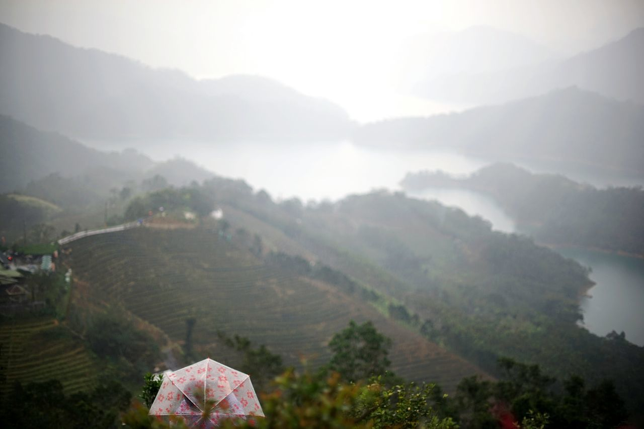 Nature Mountain Fog Travel Tree Landscape Beauty In Nature Miles Away Unbrella Rainy Day Lake View Fragility Millennial Pink